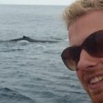 Verdens Bedste hvaler i Montanita Ecuador