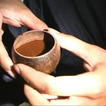 Ayahuasca Ceremoni Shaman
